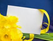 Bucket of narcissus flowers, envelope on blue-purple background — Stock Photo