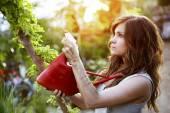 Bella jardinera — Foto de Stock