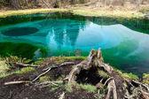Geyser lake, thermal spring — Foto de Stock