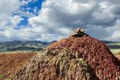Place of worship for Altai heathens — Stock Photo