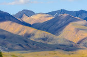 Hot summer day landscape in Altai — Stock Photo