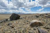 Hot day in Altai steppe — Stock Photo