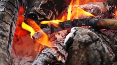 Ashes and flame on burning log in a fire — Stock Video