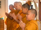 Yasothon  Thailand Feb 21 2015  5 Unidentified Asian young boys become a monk — Stockfoto