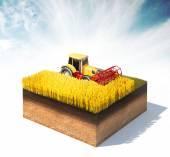 Tractor  harvesting wheat — Stock Photo