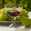 Still life- of a glass of wine,grapes and figs -outdoors. — Stock Photo #63275007