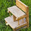 Old little a baby chair on the grass in the garden — Stock Photo #78767824
