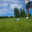 Golf ball on tee and golf club on golf course — Stock Photo #64419989