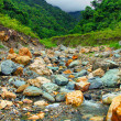 River deep in mountain forest. Nature composition. — Stock Photo #81916472