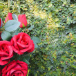 Red rose bouquet for Valentine day — Stock Photo #64384137