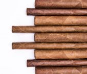 Cigars in a row with space for text. — Stock Photo