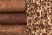 Cuban cigars on tobacco background — Stockfoto