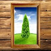 Tree in the window. Tree of life. Picture. — Stock Photo
