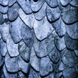 Постер, плакат: Blue leaves background in the form of scales of a snake
