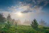 Sunset of foggy valley — Stock Photo