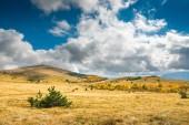 Crimea autumn valley — Stock Photo
