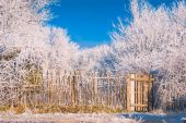 Fence in a hoar frost — Stock Photo