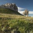 Landscape with high cliffs — Stock Photo #65661961