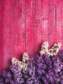 Various lilac — Foto de Stock