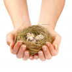 Nest in hands — Stock Photo #70632461