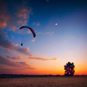 Paraglide in a sunset sky — Stock Photo