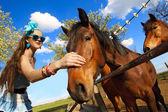 Girl feeding her horses — Stock Photo