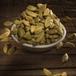 Green cardamom seeds — Stock Photo #73006453