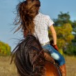 Woman in blue jeans riding  horse — Stock Photo #74215373