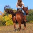 Woman in blue jeans riding  horse — Stock Photo #74288733