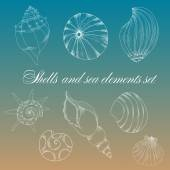 Shells and sea elements set — Vettoriale Stock