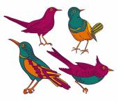 Colorful birds set — Stockvektor