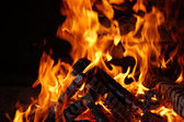 Charred wood with bright flames — Stock Photo