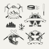 Set of extreme sports emblems, badges, labels and designed elements — Stock Vector