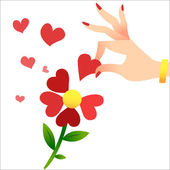 Guessing on the petals. A womans hand lifts the heart petals — Vector de stock