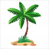 Green palm tree on a neutral background — Stock Vector