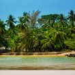 Beautiful lagoon with green coconut palm trees along a coastline — Stock Photo #70093389