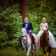 A couple of beautiful young newlywed are sitting on the horses a — Stock Photo #71354303