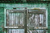 A wooden vintage scaled door at green bricks wall background. — Stock Photo
