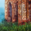 Beautiful view of old ruined red bricks church with arches at summer green grass and deep fog background. — Stock Photo #78451344