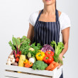 Chef with fresh  vegetables — Stock Photo #64038429