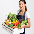 Chef with fresh  vegetables — Stock Photo #64038437