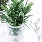 Fresh herbs in glass bottles — Stock Photo #65455837