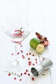 Martini cocktail  with lime  and  pomegranate pips — Stock Photo