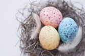 Colorful speckled eggs  — Stock Photo