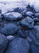 Winter twilight — Stock Photo