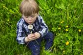 Cute boy with dandelion — Stock Photo