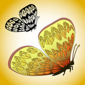 Exotic colorful butterfly — Wektor stockowy
