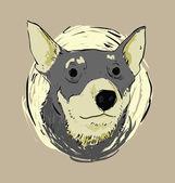 Dog Face — Stock Vector
