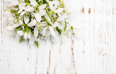 Snowdrops bunch on wooden background — Foto de Stock