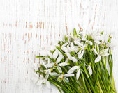 Snowdrops bunch on wooden background — Stock Photo